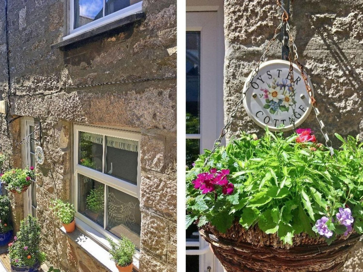 Oyster Cottage - Cornwall - 1002656 - photo 1