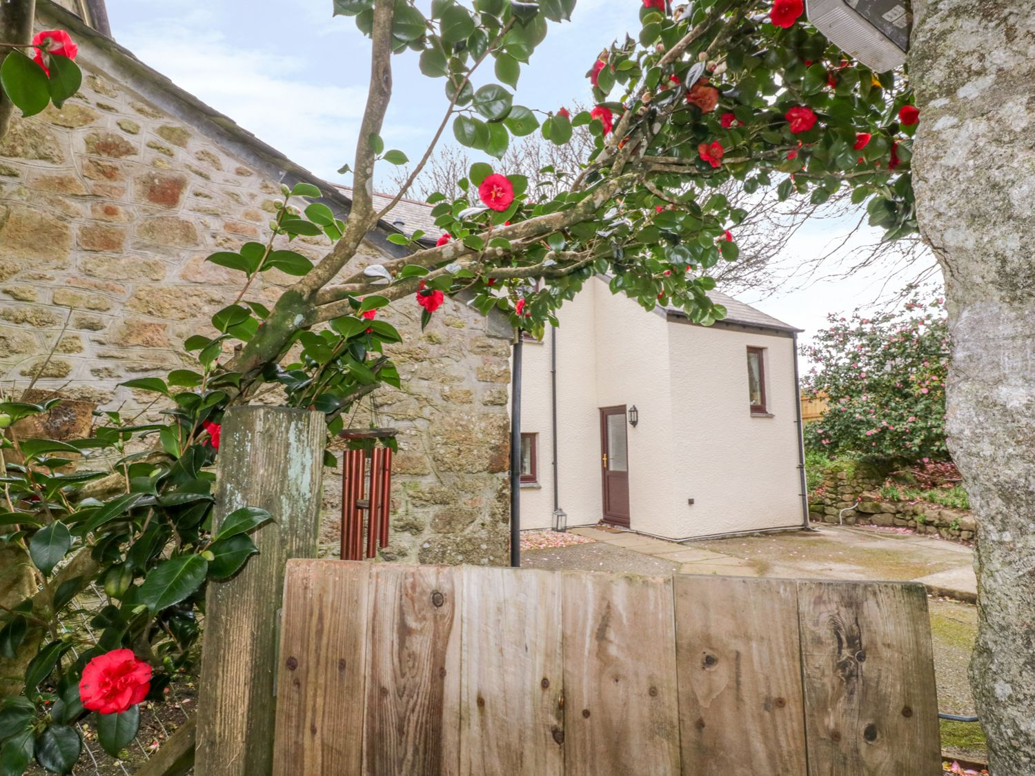 Camellia Cottage - Cornwall - 1006680 - photo 1