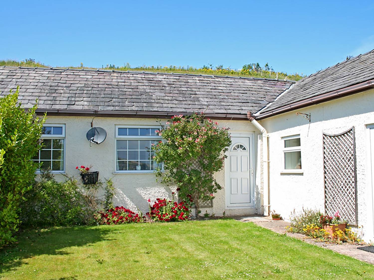 Mermaid Cottage - Anglesey - 1008922 - photo 1
