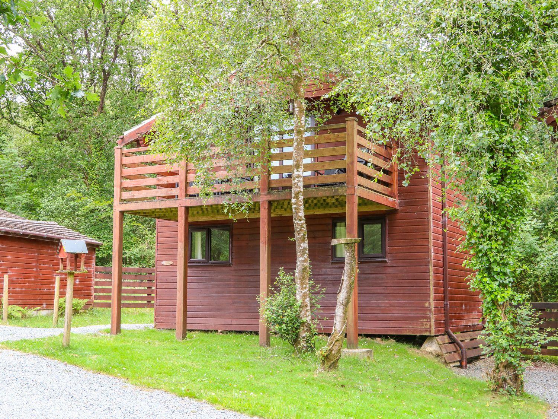 Beech Tree @ Kingslakes - Devon - 1014746 - photo 1