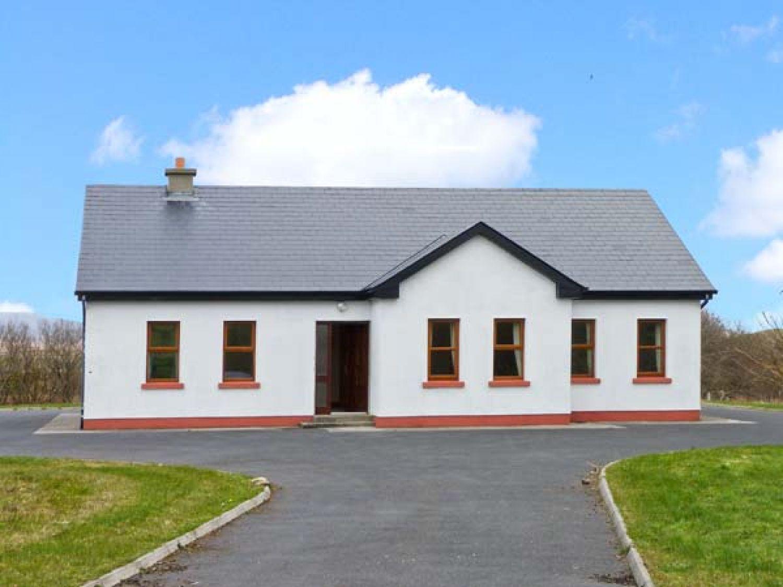 Corn Crake - Westport & County Mayo - 24547 - photo 1