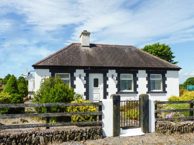Bracken - South Ireland - 25911 - photo 1