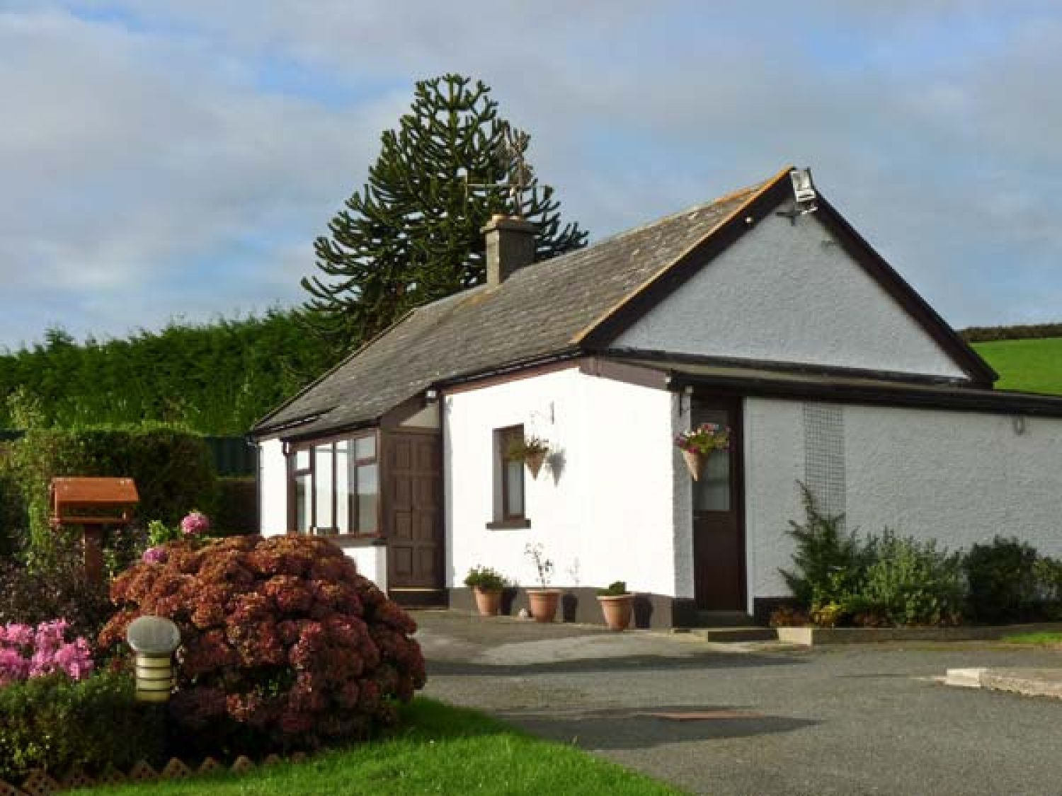 Silver Strand Cottage - County Wicklow - 4333 - photo 1