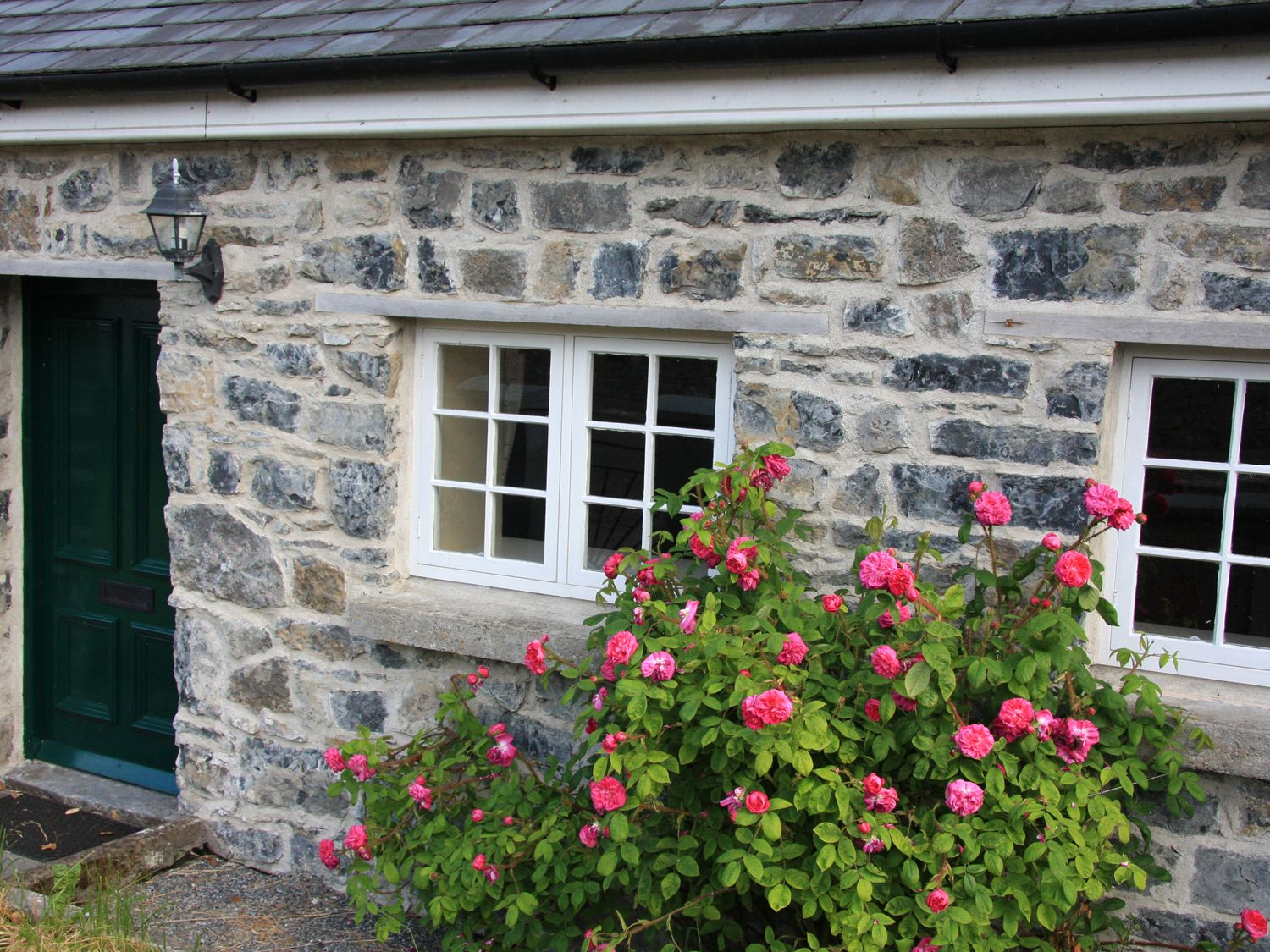 Charlie's Cottage - South Ireland - 915465 - photo 1
