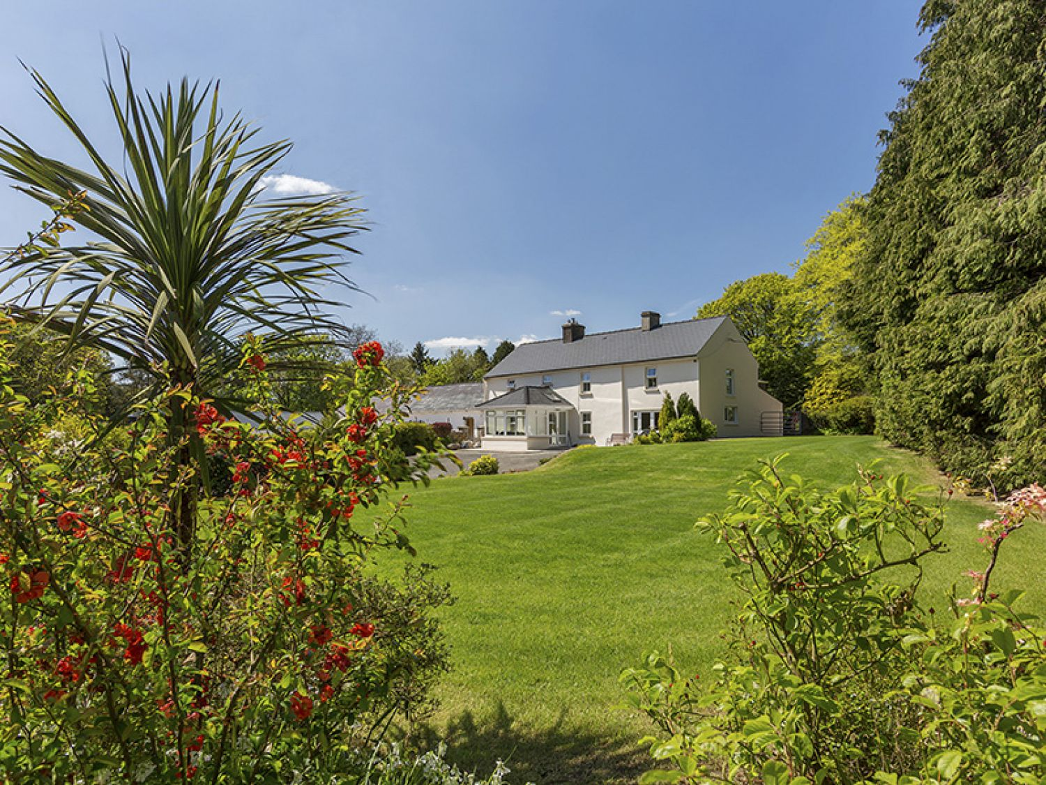 Curradoon House - South Ireland - 932008 - photo 1