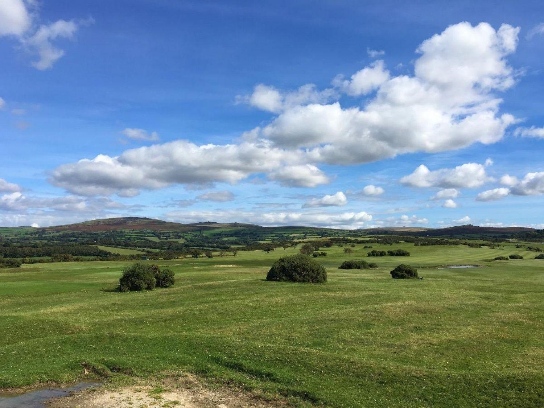 Edgemoor - Devon - 960077 - photo 1