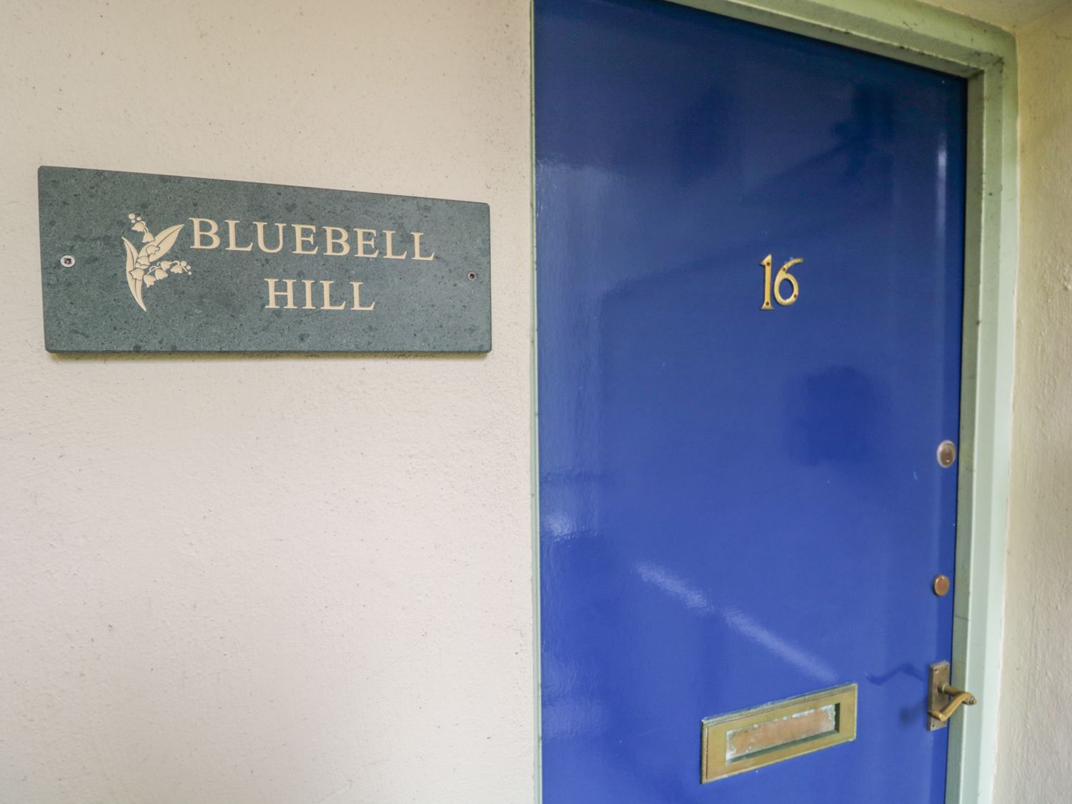 Bluebell Hill photo 1
