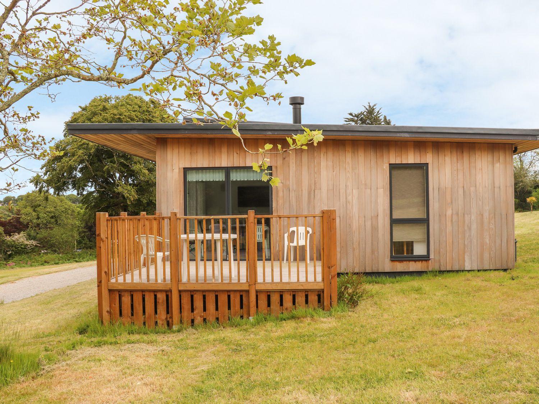 Willow - Cornwall - 975179 - photo 1