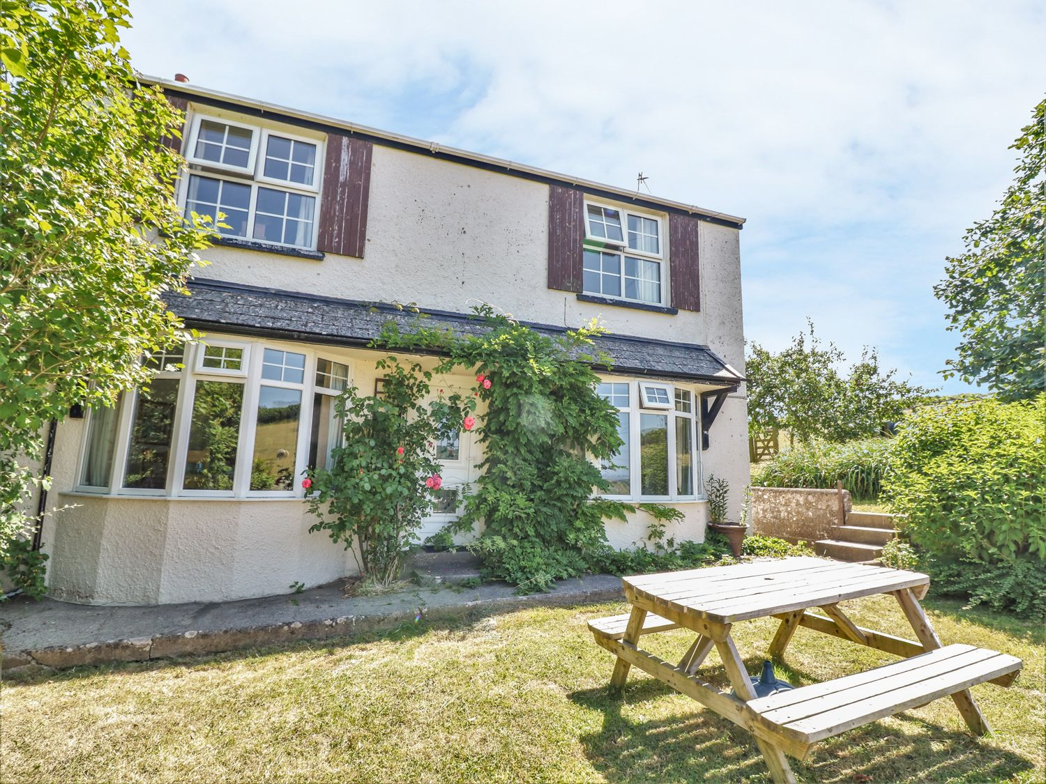 Pillhead Cottage - Devon - 976124 - photo 1