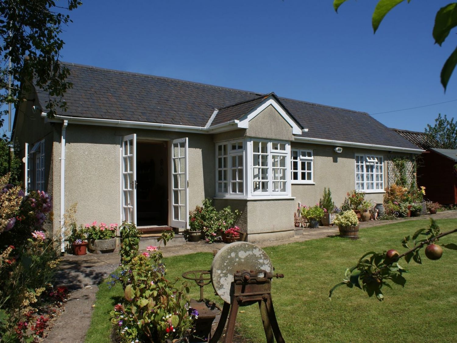 Wolston Cottage - Devon - 976157 - photo 1