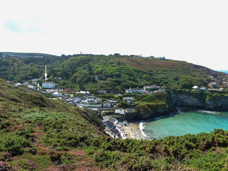Sea Thrift - Cornwall - 976392 - photo 1