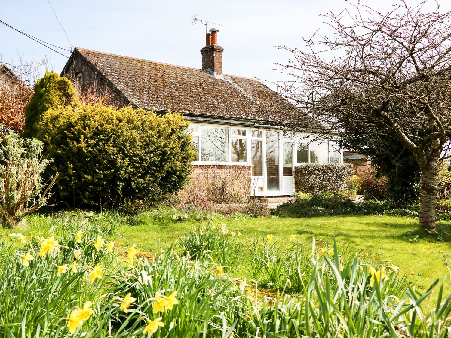 Sunny Croft - Dorset - 977681 - photo 1