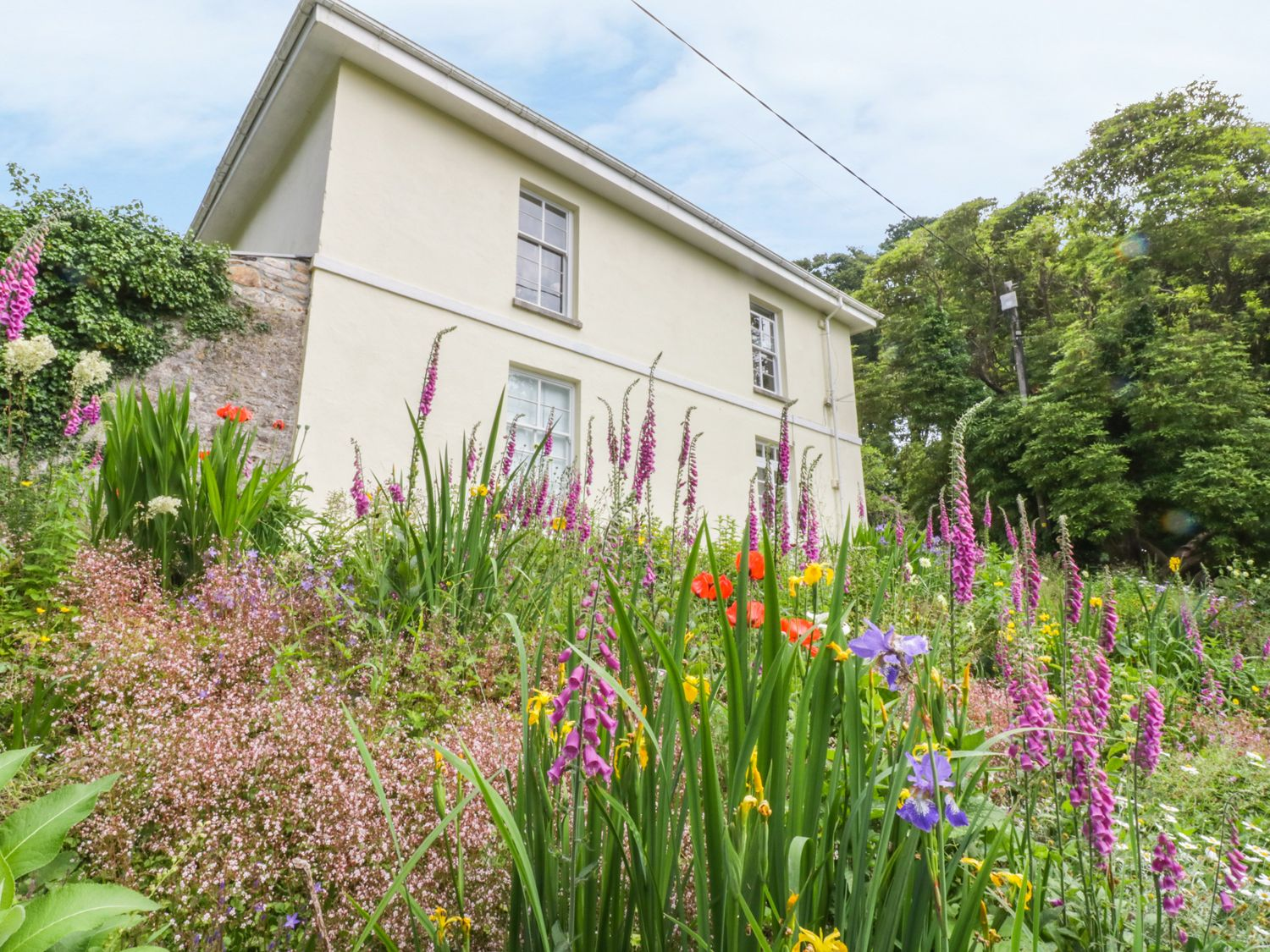 The Patio Flat - Cornwall - 993024 - photo 1