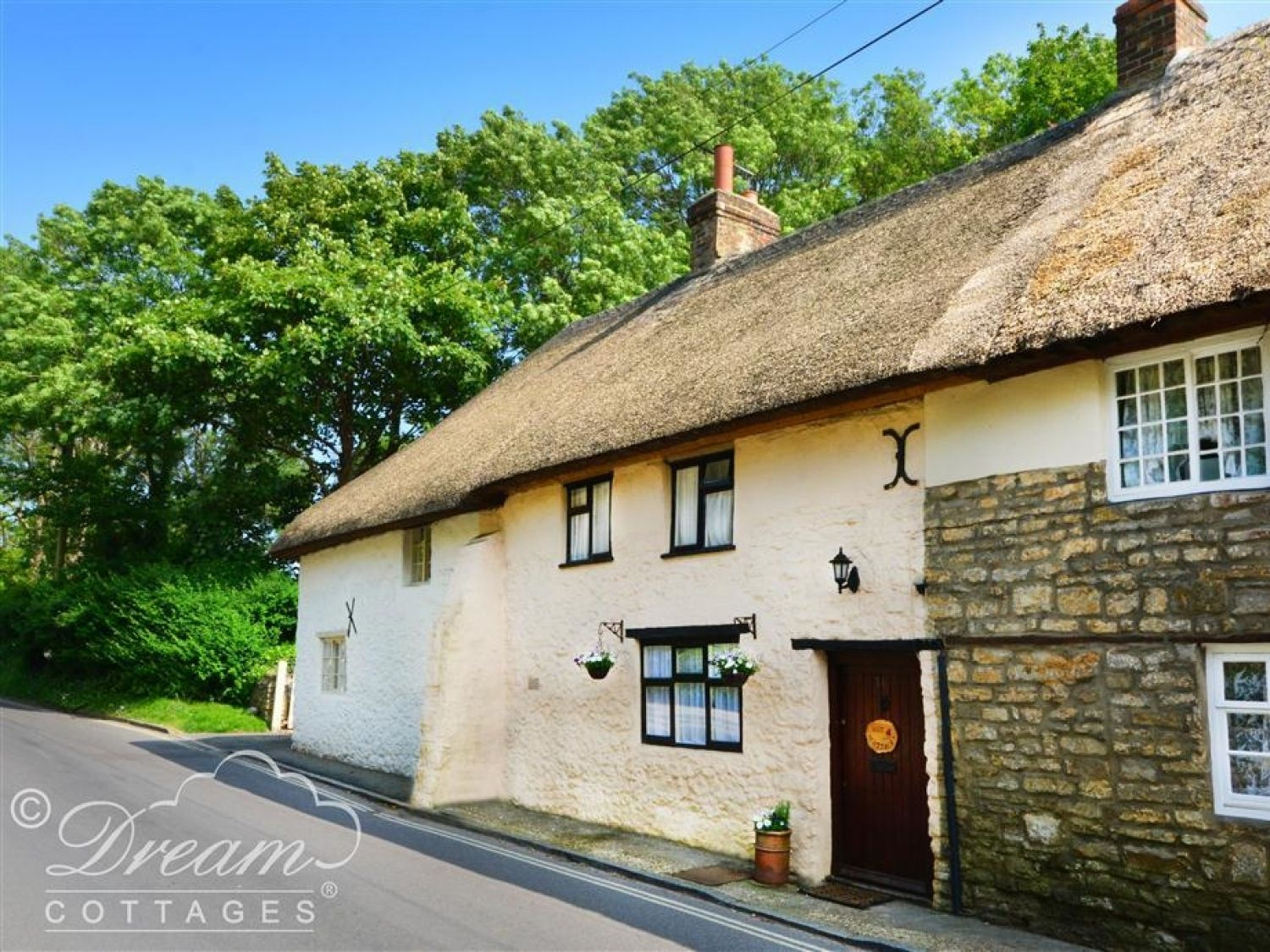 Nut Cottage - Dorset - 994441 - photo 1