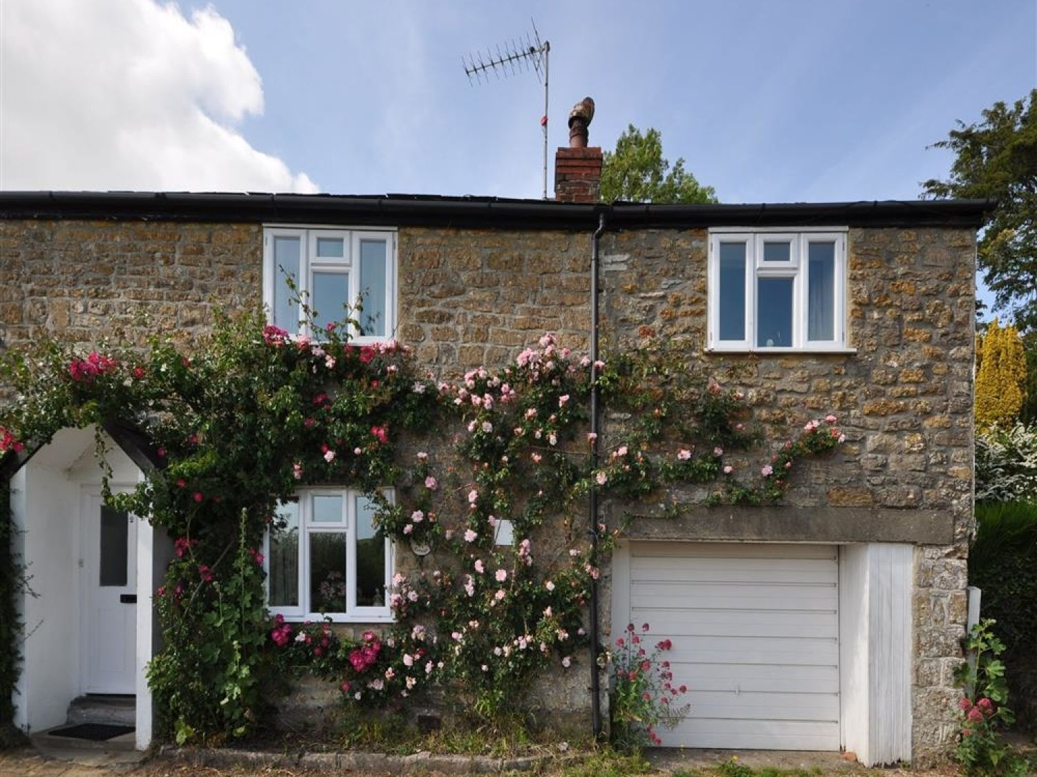 Pear Tree Cottage - Dorset - 994570 - photo 1