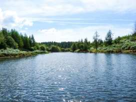 Can Brow - Lake District - 914053 - thumbnail photo 12
