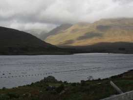 Spring Bank Cottage - Shancroagh & County Galway - 925300 - thumbnail photo 20