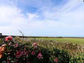 Trevowhan House - Cornwall - 938753 - thumbnail photo 31
