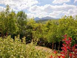 Silver Birch House - County Kerry - 951421 - thumbnail photo 22