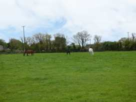 Coningbeg Cottage - County Wexford - 957333 - thumbnail photo 8