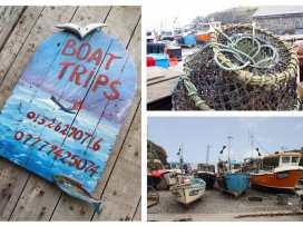 Mengarth - Cornwall - 959728 - thumbnail photo 10