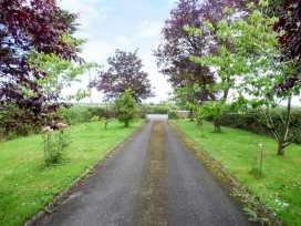 Buttercup Cottage - South Ireland - 965020 - thumbnail photo 16