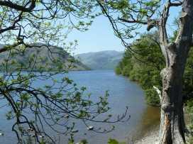 Appletree  Cottage - Lake District - 972680 - thumbnail photo 22