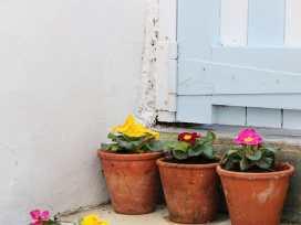 No. 2 Belgravia - Cornwall - 974734 - thumbnail photo 16