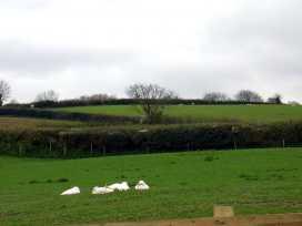 Bowbeer Barn - Devon - 975825 - thumbnail photo 17