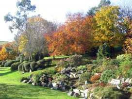 Blackberry Lodge - Devon - 975851 - thumbnail photo 23