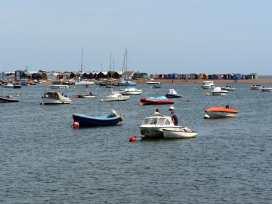 The Dolphins - Devon - 975895 - thumbnail photo 19