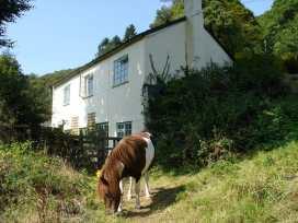 Barn Cottage - Devon - 975955 - thumbnail photo 25
