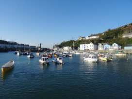 Evergreen - Cornwall - 976519 - thumbnail photo 42