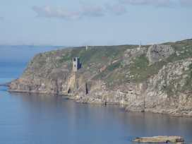 Evergreen - Cornwall - 976519 - thumbnail photo 43