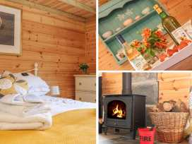 Tamar Lodge - Cornwall - 982202 - thumbnail photo 5
