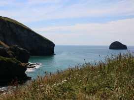 Gull Rock - Cornwall - 984748 - thumbnail photo 17