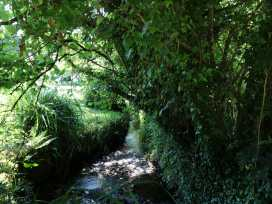 Tranquillity - Cornwall - 985933 - thumbnail photo 20