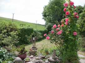 Garden Cottage - Devon - 985967 - thumbnail photo 21