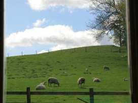 Little Barn - Cotswolds - 988611 - thumbnail photo 9