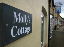 Molly's Cottage - Cotswolds - 988627 - thumbnail photo 3
