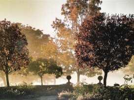 Hazelnut Barn - Cotswolds - 988714 - thumbnail photo 27