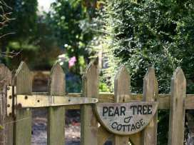 Pear Tree Cottage - Cotswolds - 988766 - thumbnail photo 4