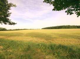 Harvest Barn - Cotswolds - 988804 - thumbnail photo 13