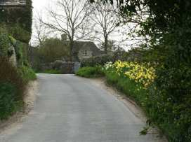 Lavender's Cottage - Cotswolds - 988812 - thumbnail photo 17