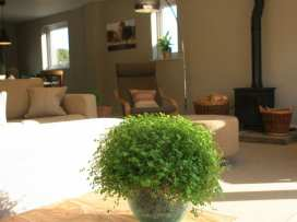 The Grove - Cotswolds - 988826 - thumbnail photo 9