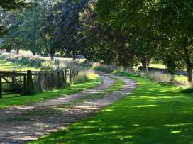 The Grove - Cotswolds - 988826 - thumbnail photo 44