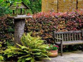 Hadcroft Cottage - Cotswolds - 988851 - thumbnail photo 32