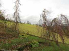 Llangain Farmhouse - Herefordshire - 988859 - thumbnail photo 18