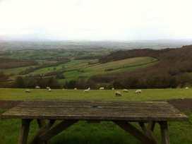 Llangain Farmhouse - Herefordshire - 988859 - thumbnail photo 16