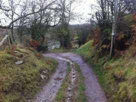 Llangain Farmhouse - Herefordshire - 988859 - thumbnail photo 17